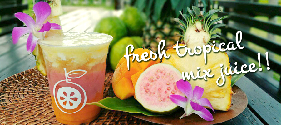 光楽園 FRESH MIX JUICE